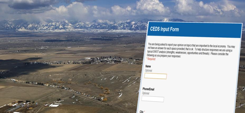 CEDS Input Form